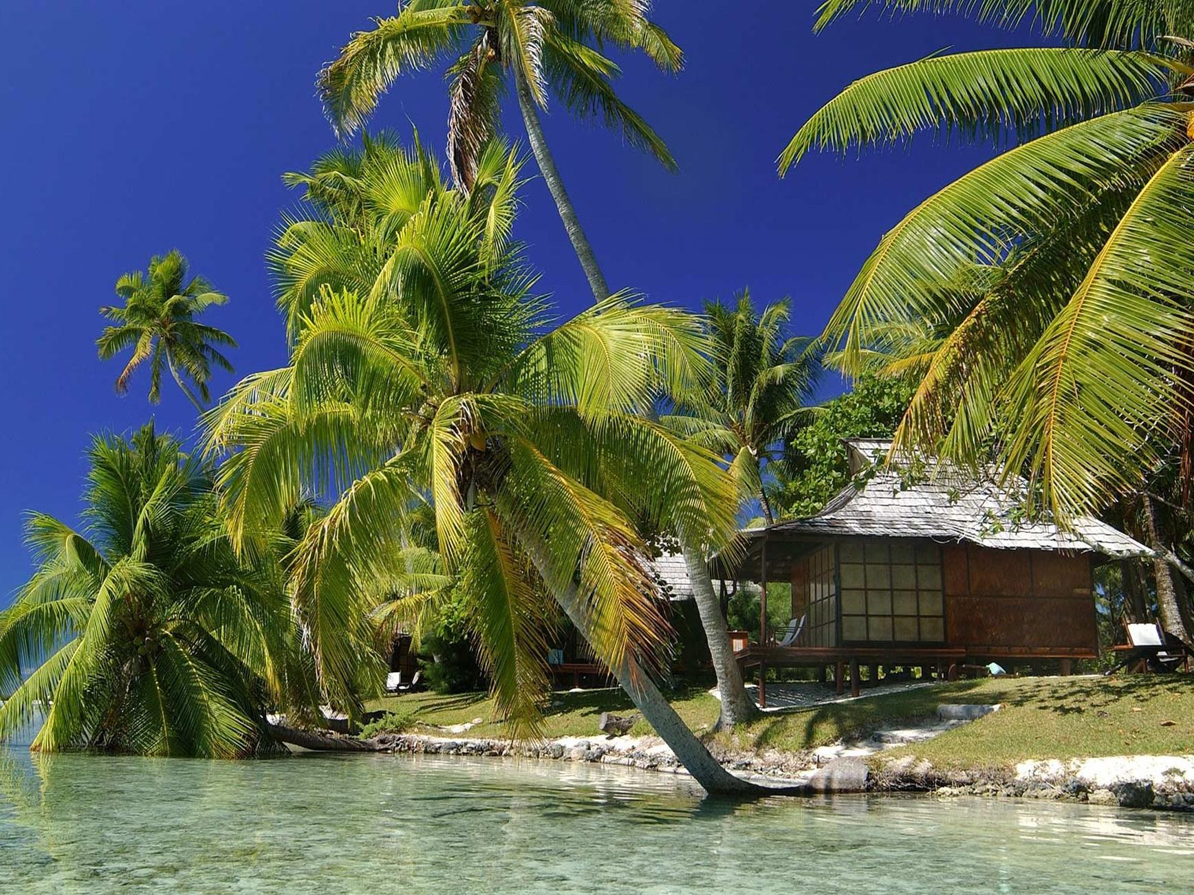 Vahine Island , Tahaa, French Polynesia