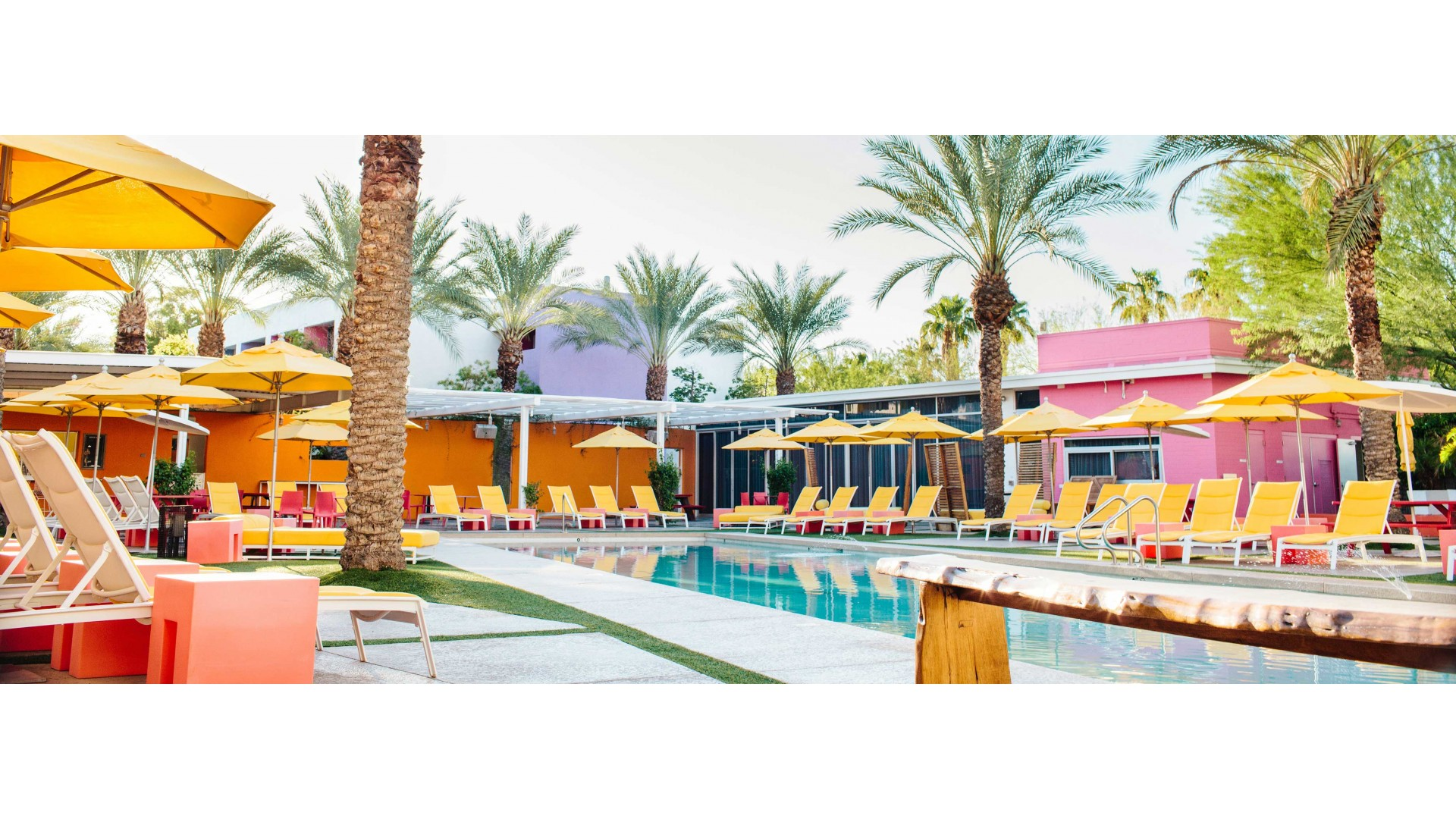 Saguaro Hotel Scottsdale Reviews