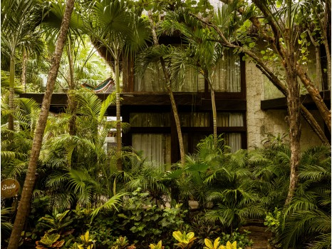 Photo of Jungle Suite
