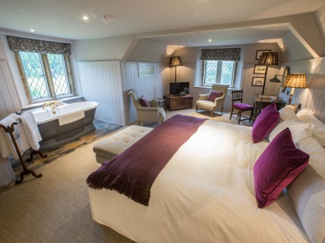 Photo of Comfy Luxe Room