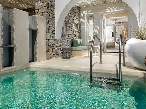 Photo of Deluxe Room with plunge pool