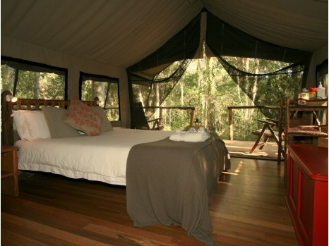 Photo of Original Safari Tent