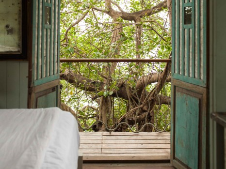 Photo of Arjun Tree House