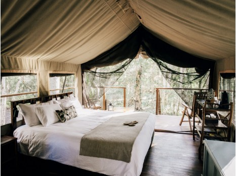 Photo of Original Safari Tent