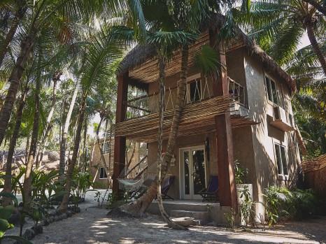 Photo of Jungle Suite