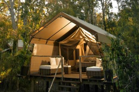 Photo of Paperbark Camp