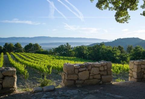 Chateau La Coste, 2750 Route de la Cride, 13610 Le Puy-Sainte-Reparade, Aix-en-Provence, France.