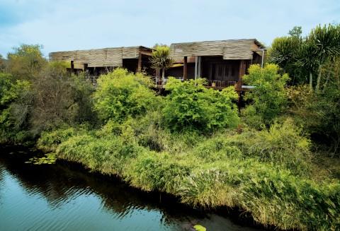 Sweni River, Kruger National Park 1350, South Africa.