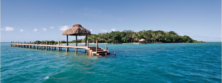 Dolphin Island Fiji Islands Fiji
