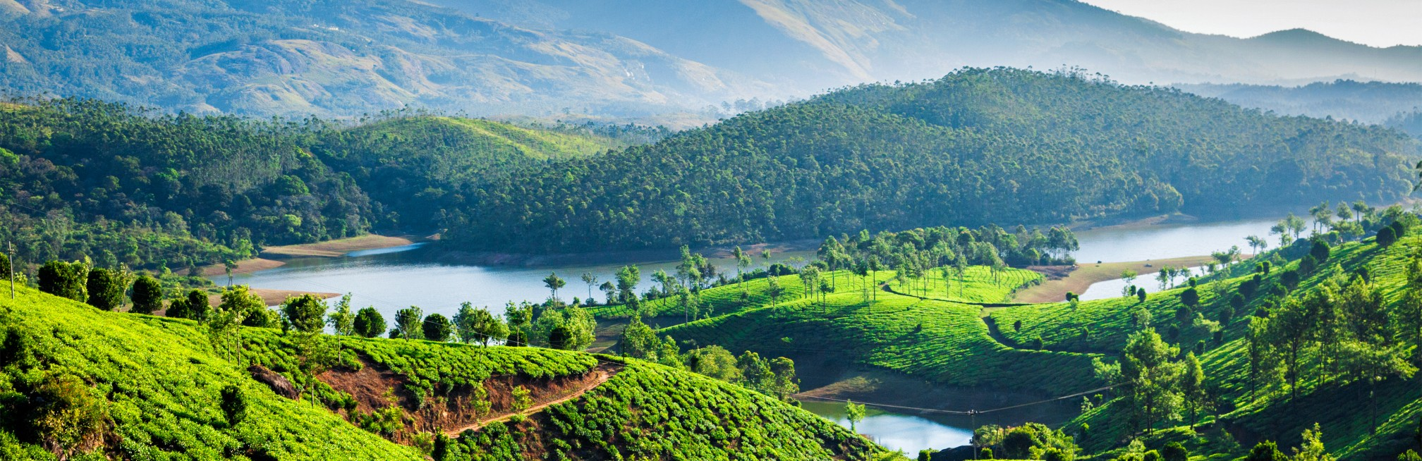 Classic Kerala: beaches and backwaters