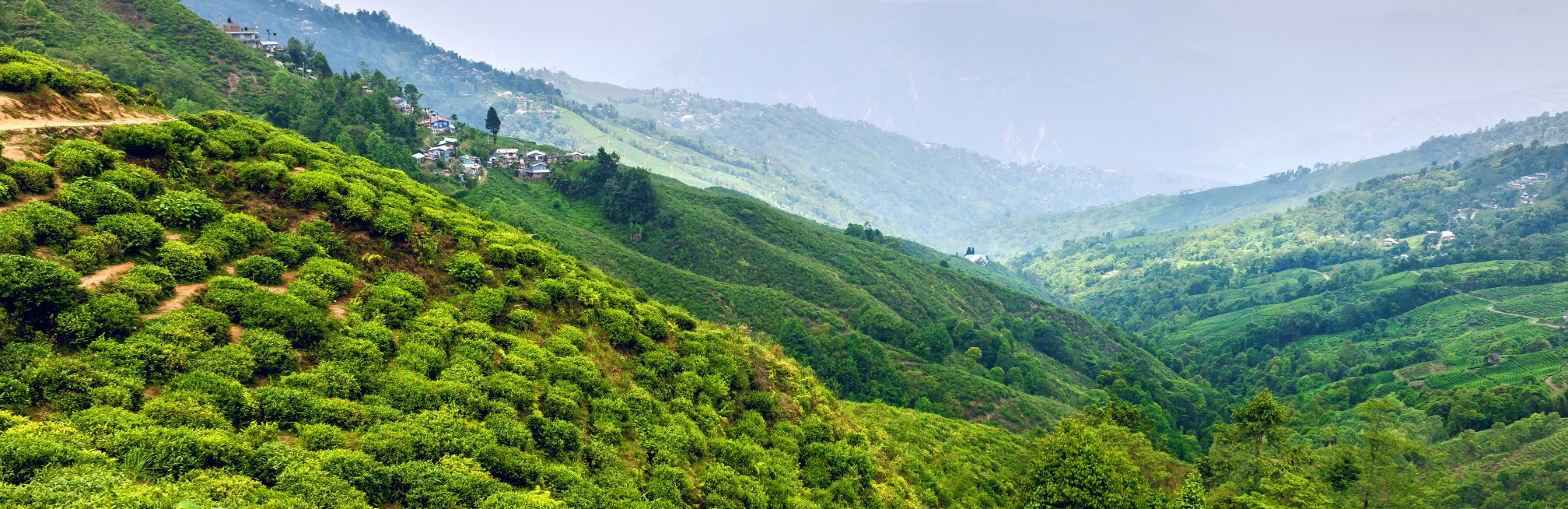Into the Himalayas: mountain villages and high tea