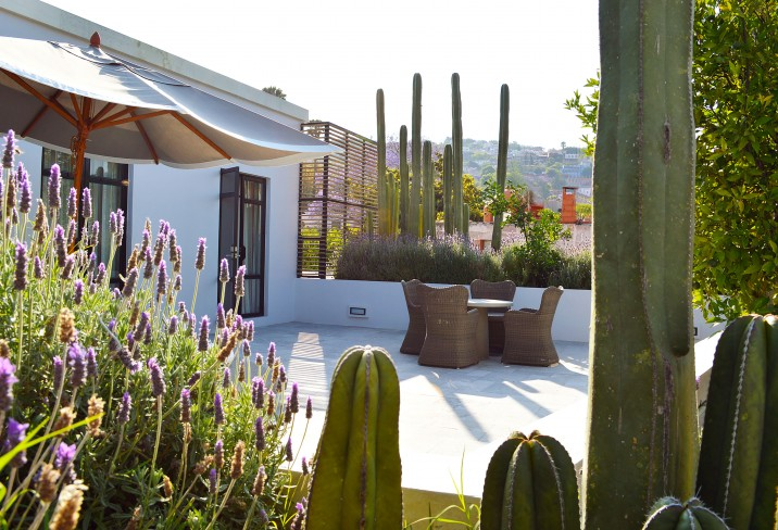 Hotel Matilda – San Miguel De Allende – Mexico - Owner Suite C terrace