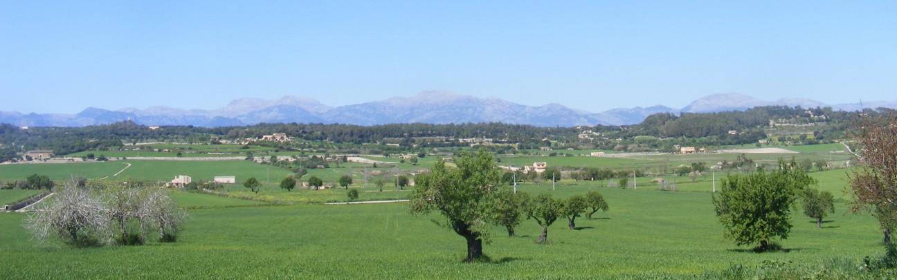 Sa Rota den Palerm – Mallorca – Spain