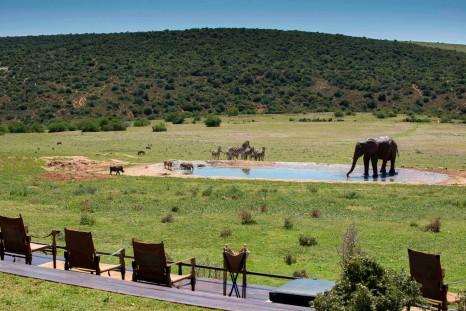Photo of Gorah Elephant Camp