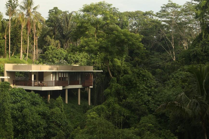 Photo of Terrace Tree Villas