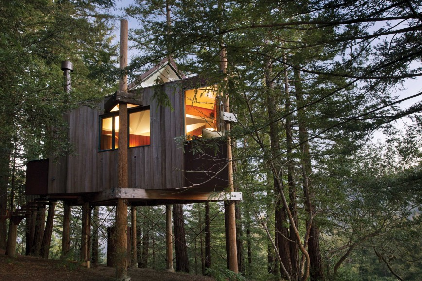 Photo of Tree House