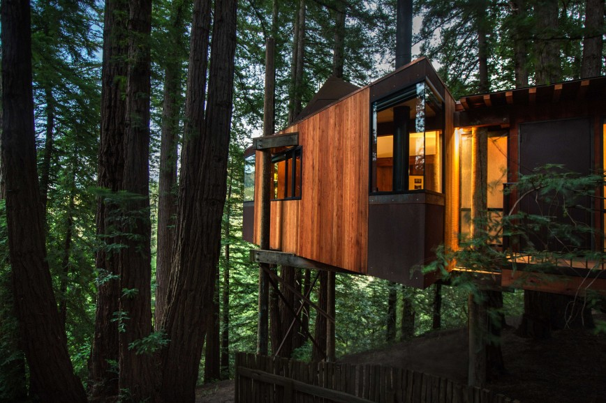 Photo of Tree House